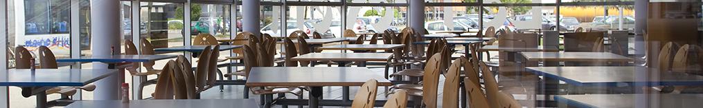 Insa De Lyon Restauration