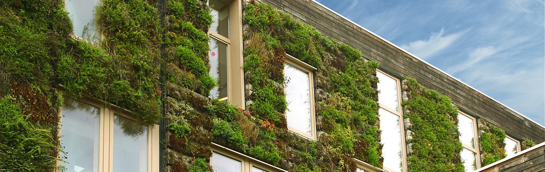 Tribune // Développement durable : faisons 2030 dès 2022