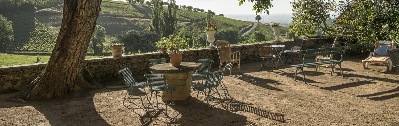 Château de Javernand : quand 2 INSA développent leur domaine viticole